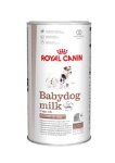 Babydog Milk Giant