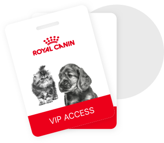 My Royal Canin